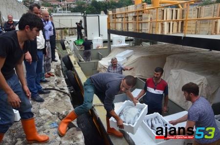 Rize'den Yola Çıktılar, Vatandaşı Ucuz Balık Yedirdiler !